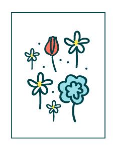 Mix di fiori per api e farfalle